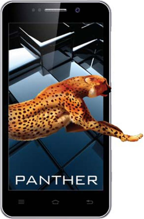 iBall Andi 5K Panther