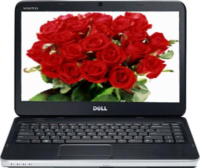 Dell Vostro 2420 Laptop