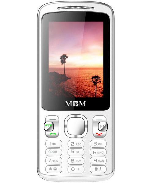 MBM 309