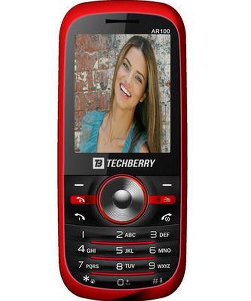 Techberry AR100