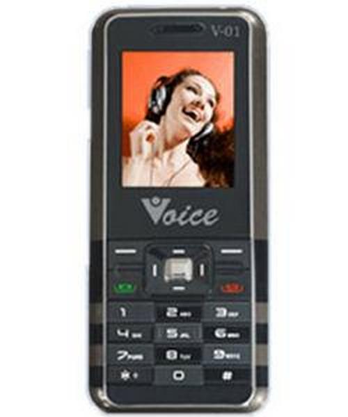 Voice V-01