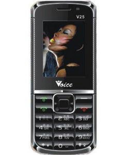 Voice V-25