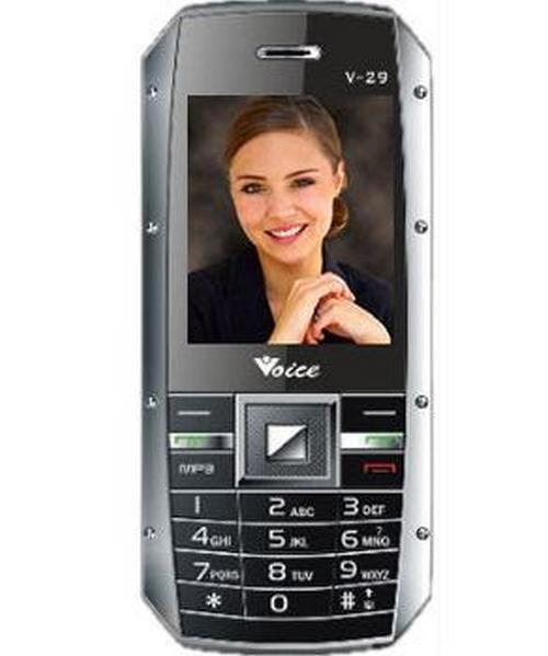 Voice V-29